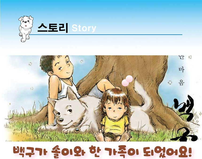 스토리 Story 백구가 솔이와 한 가족이 되었어요!