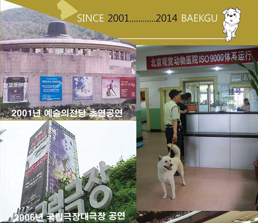 SINCE 2001...........2014 BAEKGU 2001년 예술의전당 초연공연 2006년 국립극장대극장 공연